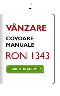 Selecţie combinată de covoare manuale, la RON 1343, indiferent de preţul anterior!
