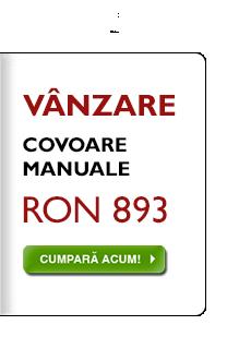 Selecţie combinată de covoare manuale, la RON 893, indiferent de preţul anterior!